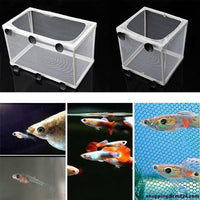 Aquarium балық өсіру құдықтары Double Guppies Балалар шлагбаумы Trap Box Isolator Mini Tanks