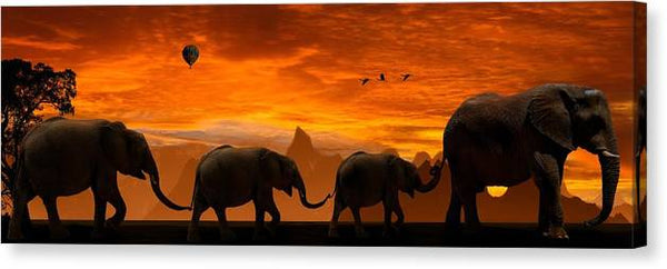Background Panorama Sunset Abendstimmung Animals - Stretched Canvas Print Ready to Hang
