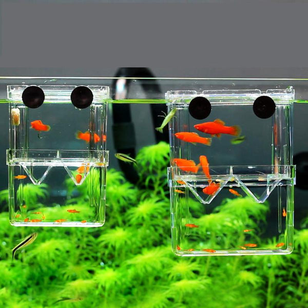 8*7*11Cm Double-Deck Clear Fish Breeding Isolation Box Aquarium Breeder Tank Hatching Incubator