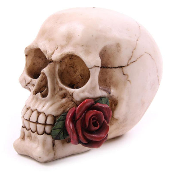 Skull With Rose Dangerously Romantic Love Skeleton Head Halloween Decor