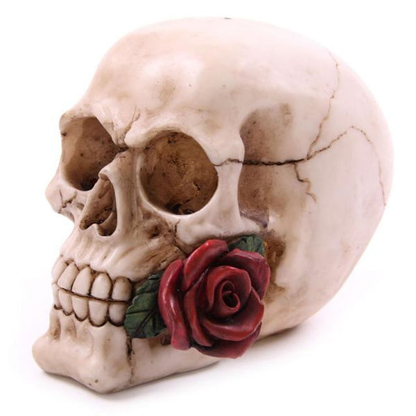 Skull With Rose Dangerously Romantic Love Skeleton Head Halloween Decor A