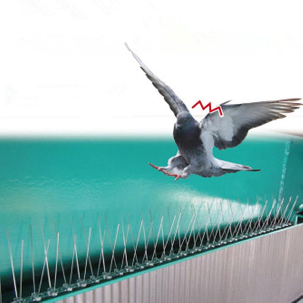 2.5M Plastic Bird And Pigeon Spikes Anti Spike For Get Rid Of Pigeons Scare Birds Pest Control