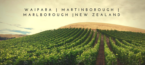 Pinot Noir - NZ Martinborough/Marlborough