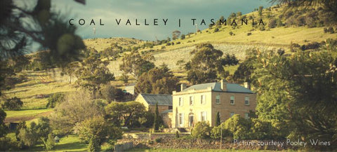 Pinot Noir - Tasmania Coal Valley