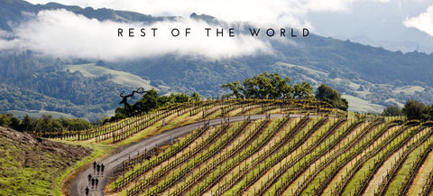 Pinot Noir - Rest of the World