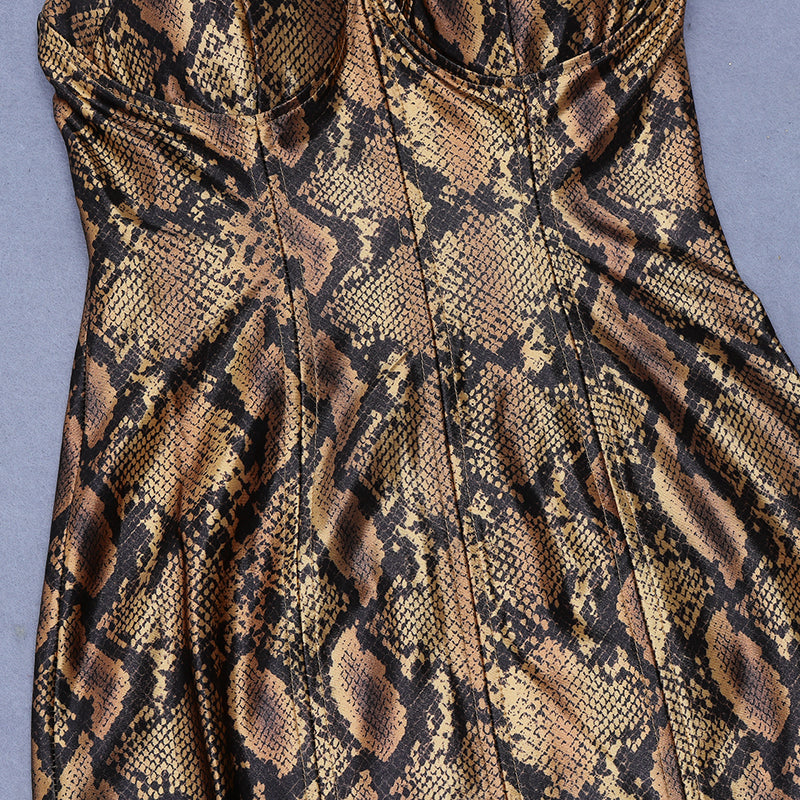 Fashion Leopard Print  V Neck dress