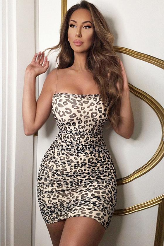 shopafashion Fashion Folds Mesh Leopard Dress