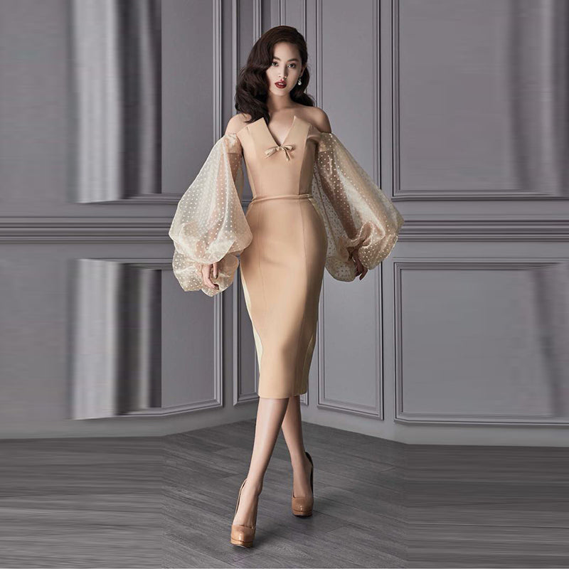 Transparent Sleeves Women Fashion Dress