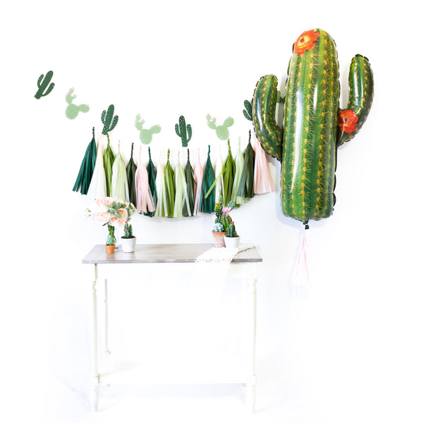 Blush Cactus Fiesta Balloon Party Box