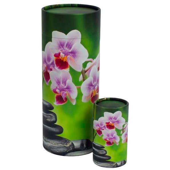 Orchid Scattering Tube