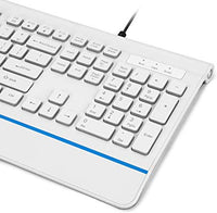 RK103 Backlit USB Keyboard,Full-Size Computer Keyboard USB Keyboard with Blue LED Backlit for Windows 7/8/10/Vista, Mac,Linux,PC,Laptop and Desktop-Wired