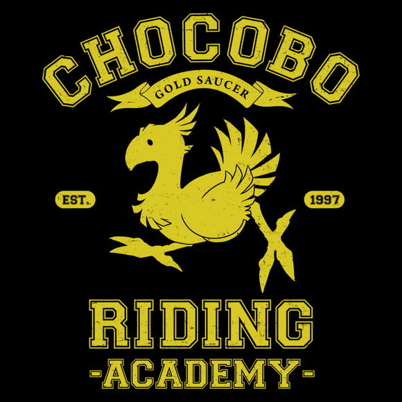 Riding Academy - Video Game Pixel T-Shirts & Retro Gaming Tees! Video Game Pixel T-Shirts & Retro Gaming Tees! Shop Our Large Collection!  Types: Men's T-Shirts, Women's Tees, Kid's Tees, Hoodies, Final Fantasy, FF, NES, SNES, VII, Final Fantasy XV, Cloud, RPG, Japanese, JRPG,  Chocobo, Squall, Yuna, Tidus, Tifa, Aerith, Sephiroth, Balthier, Rinoa, Lightning, Vaan, Vincent, Square, Women, Men, Kids, Tee