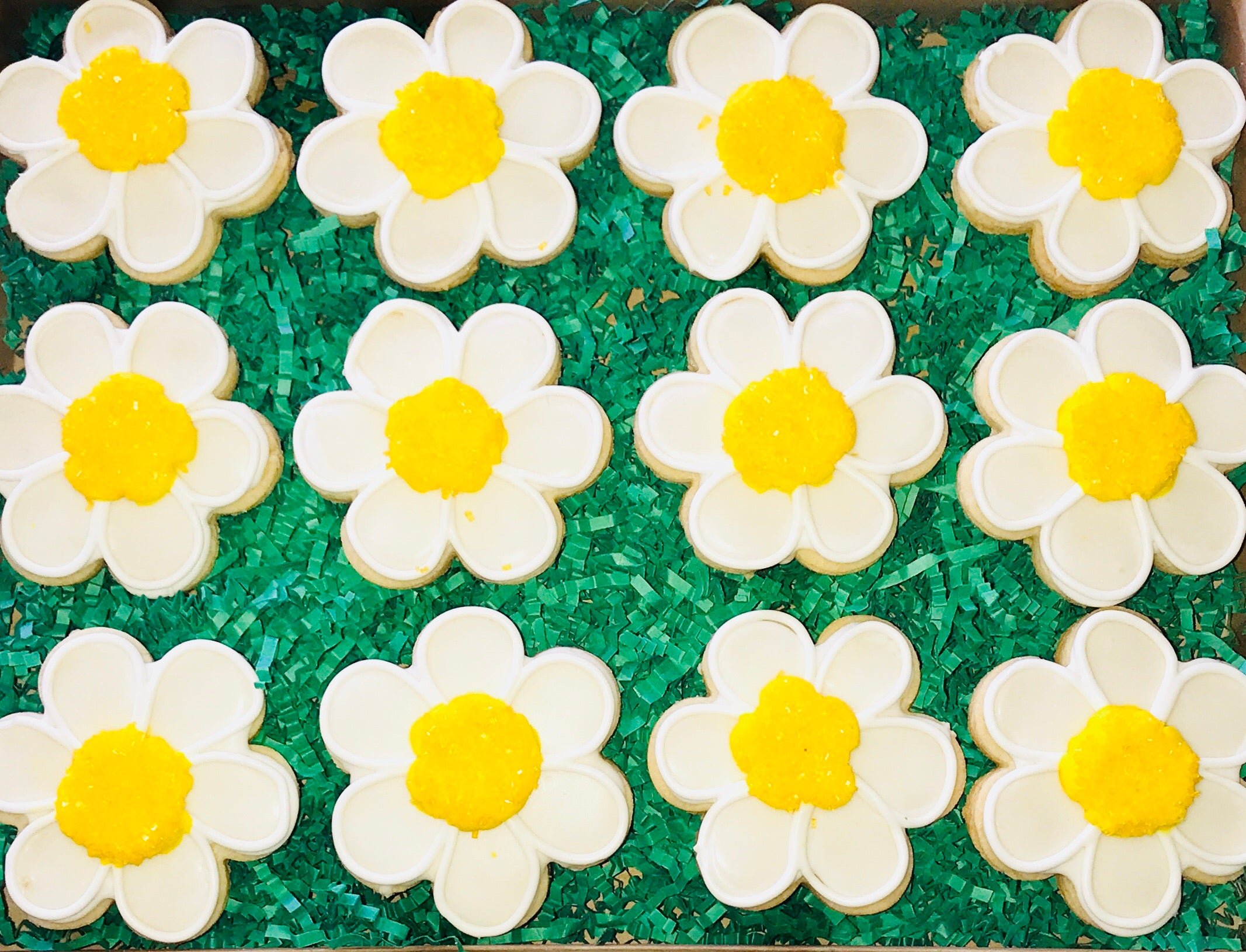 COOKIE BOX JUST BECAUSE DAISIES