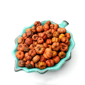 Essential Oil Mini Pumpkin Potpourri