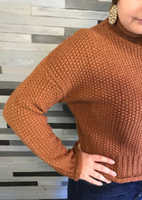 Cinnamon Turtle Neck