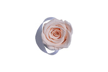 Load image into Gallery viewer, Classic mini white box - light peach rose