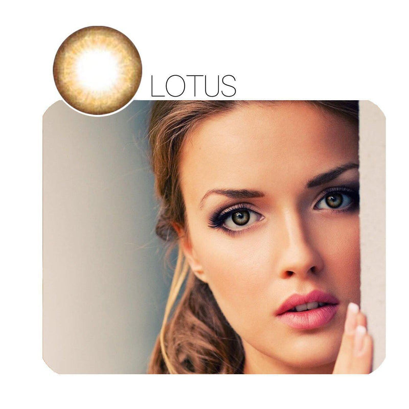 Lotus Brown Prescription (12 Month) Contact Lenses - StunningLens
