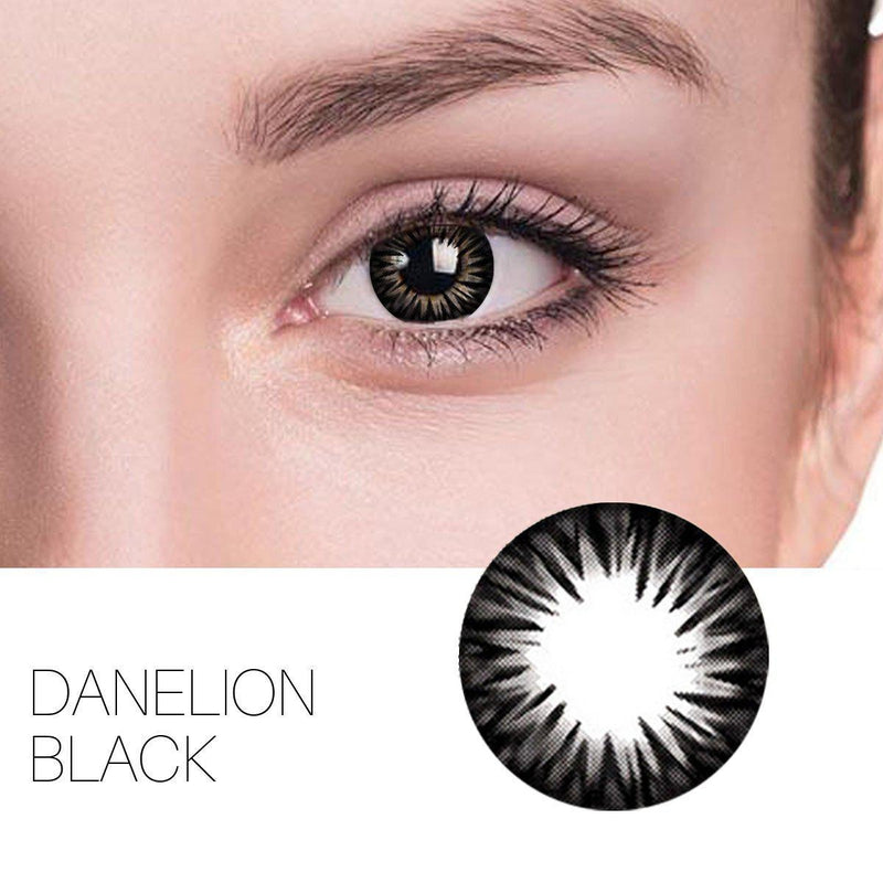 Danelion Black (12 Month) Contact Lenses - StunningLens