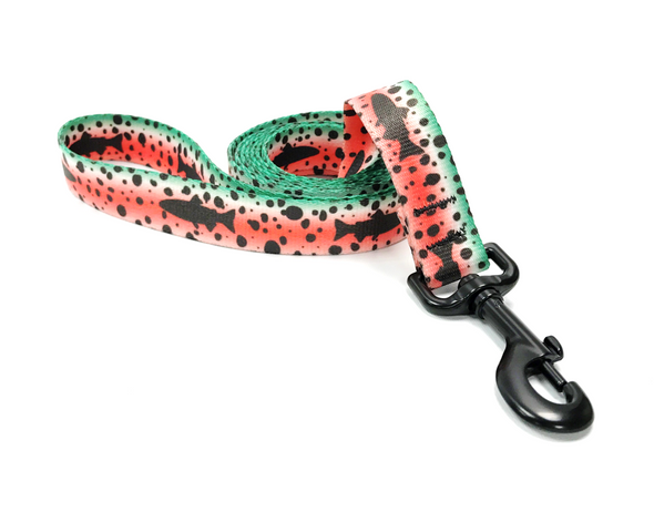 Dog Leash - Bighorn