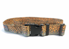 Wading Belt - RepYourWater Brook Trout