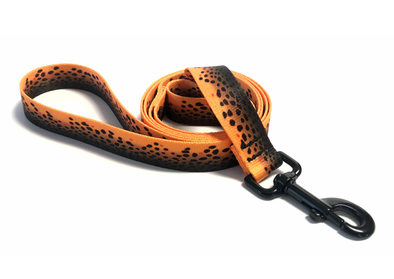 Dog Leash - RepYourWater Brown Trout