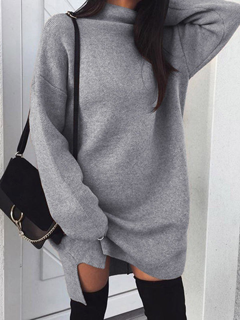 Turtle Neck Long Sleeve Casual Knitted Dress