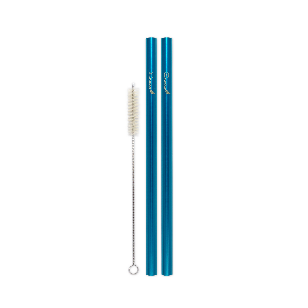 Combo Pack - 2 Steel Smoothie Straws (9.5 mm Diameter) with Cleaning Brush