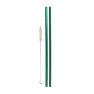 Combo Pack - 2 Steel Skinny Straws (8 mm Diameter) with Cleaning Brush
