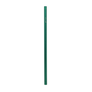 Steel Smoothie Straw (9.5 mm Diameter)