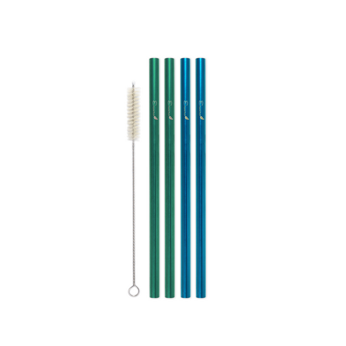 Family Pack - 4 Steel Smoothie Straws (9.5 mm Diameter) with Cleaning Brush
