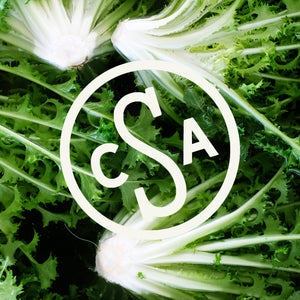 Spring 2020 CSA Share