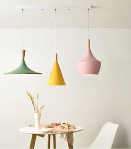 Rayne Hanging Lamp