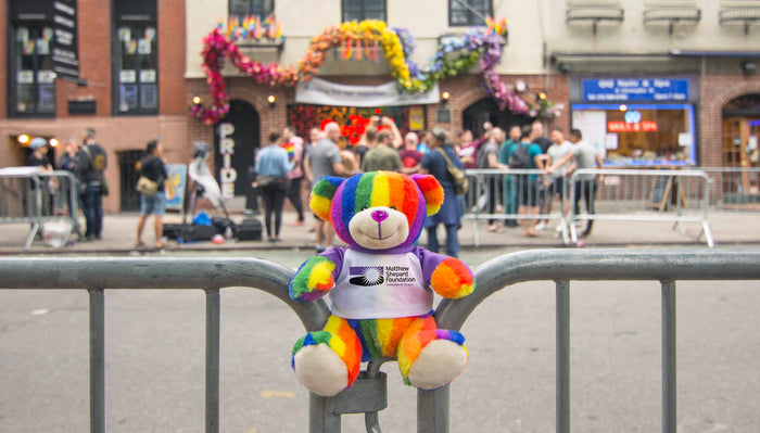 Totally Pride Teddy at Historical Pride Sites
