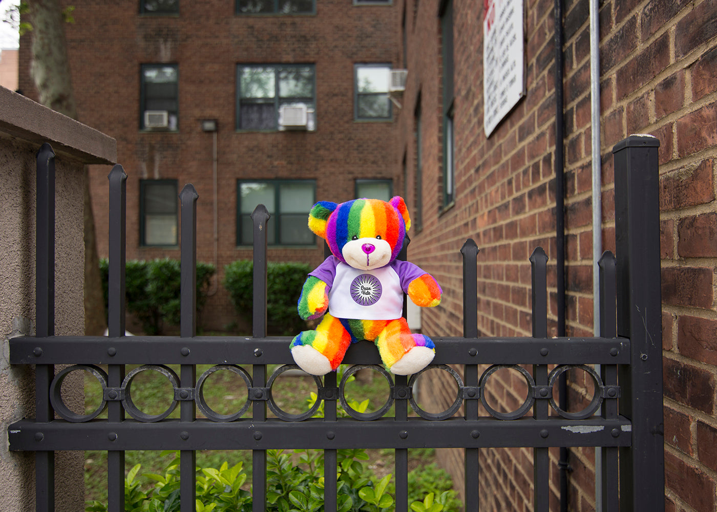Bear Buggy®'s Totally Pride Bear photographed at Harlem location of Ali Forney's murder