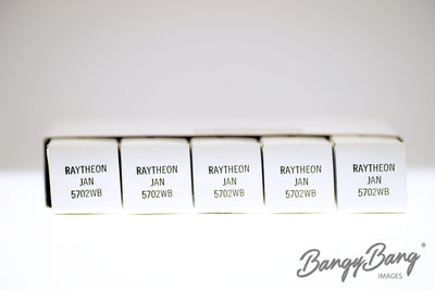 Lot 50 Vintage Raytheon JAN 5702WB / CK5702 / CK605CX / CV3895 Premium Subminiature Tube - BangyBang Tubes