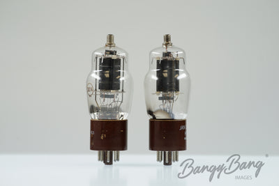 Matched Pair Hytron JAN CHY 3D21A Tube Valve - BangyBang Tubes