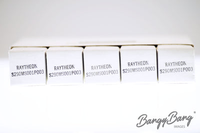 Factory Sealed 200 pc Box Raytheon S290MS001P003 / 5840 / EF732 / CV3929 Premium Tube - BangyBang Tubes