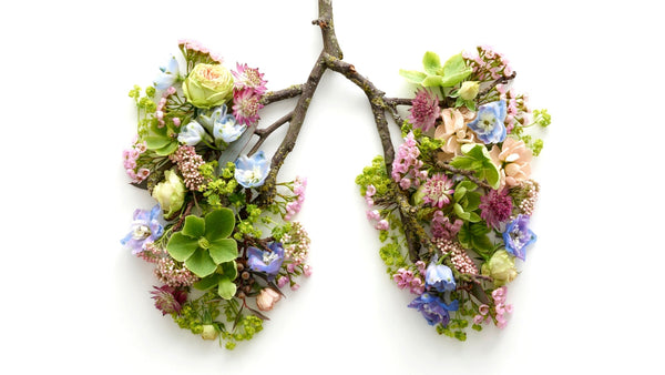 flowers and branches in the shape of lungs