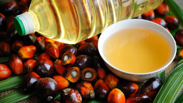 small bown of palm oil surrounded by oil palm fruit and a plastic bottle filled with palm oil