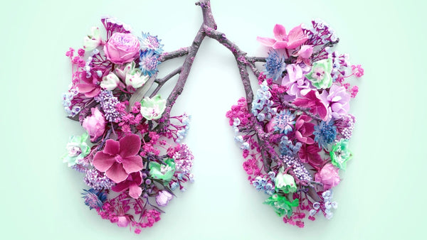 An artistic photo showing the shape of the lungs with branches and flowers. One main branch comes through the centre and splits into two then pink and purple flowers have been placed on either side in the shape of the lungs.