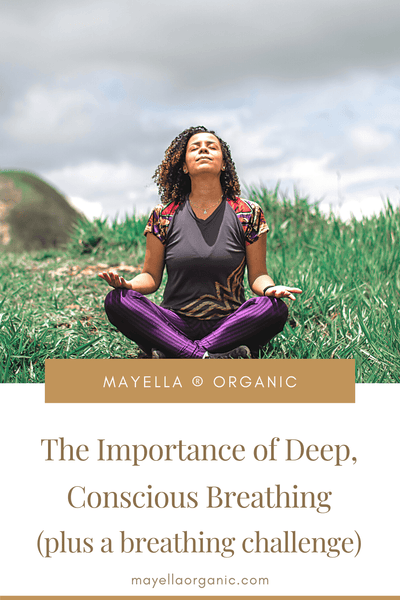 Pinterest Image with a photo at the top and text on the bottom. The photo is of a woman sitting cross-legged on grass, with grey clouds in the sky. She is breathing deeply with her eyes closed, head tilted towards the sky and hands on her knees with palms facing up. The text reads The Importance of Deep, Conscious Breathing (Plus a Breathing Challenge!)