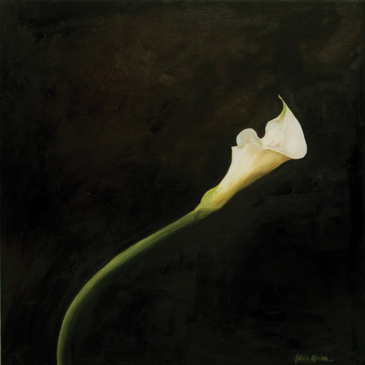 Calla Lily Limited Edition Print