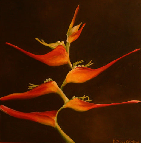 Tropical Red Bloom Limited Edition Print