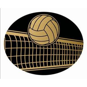 Oval Dome Insert, Black/Gold Volleyball-D&G Trophies Inc.-D and G Trophies Inc.