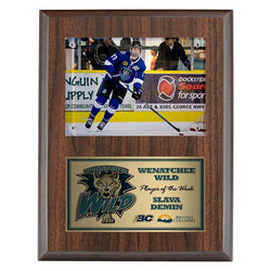 photo plaque (surface mount) laminate plaque-D&G Trophies Inc.-D and G Trophies Inc.