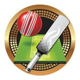 "Spectrum Insert, Cricket 2""-D&G Trophies Inc.-D and G Trophies Inc."