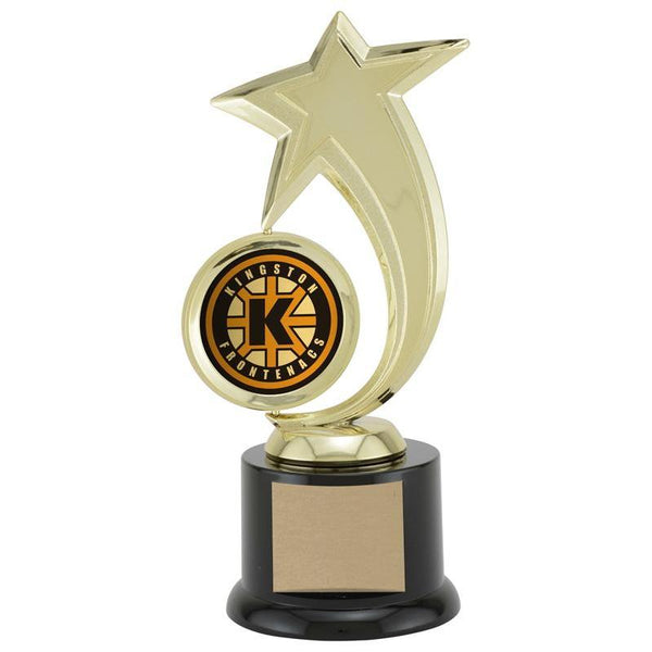 Star Spinner Achievement Award-D&G Trophies Inc.-D and G Trophies Inc.
