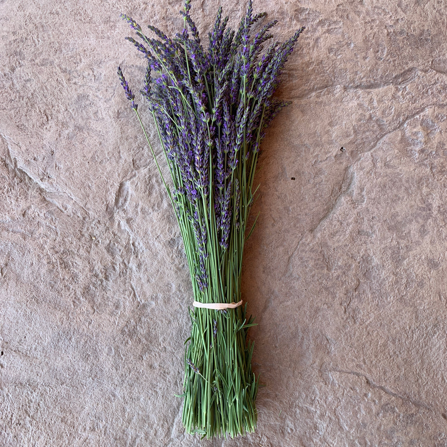 A full view of our Locke Lavender Bouquet once unwrapped.
