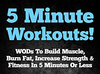 5 Minute Workouts! WODs To Build Muscle, Burn Fat, Increase Strength & Fitness - Everyday Crosstrain