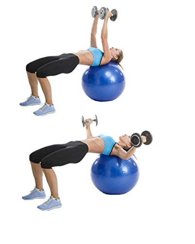 Exercise Ball Workout Poster Laminated to Sculpt your Abs, Strengthen your Core - Everyday Crosstrain